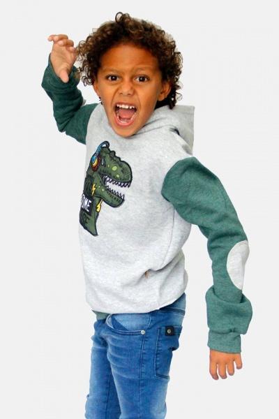 buzo de algodon friza con estampa dinosaurio dilo tu ropa divertida para niños invierno 2018