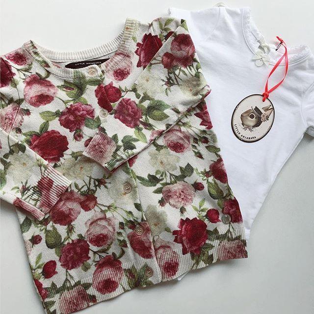 campera de algodon estampado beba Little akiabara verano 2019