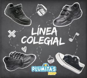 colegial plumitas 2019