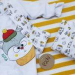 Pachi ropa para bebes otoño invierno 2019