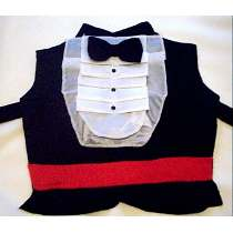 Chaleco-para-disfraz-de-caballero-facil-para-niños-25-de-mayo