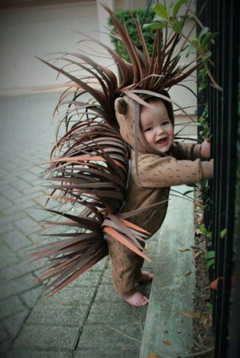 disfraz-de-erizo-puerco-espin-para-bebes-hallowen