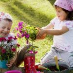 10 Actividades Creativas Y Divertidas De Jardinería Para Niños