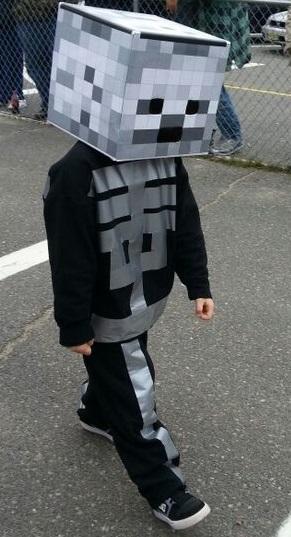 Minecraft disfraz facil niño