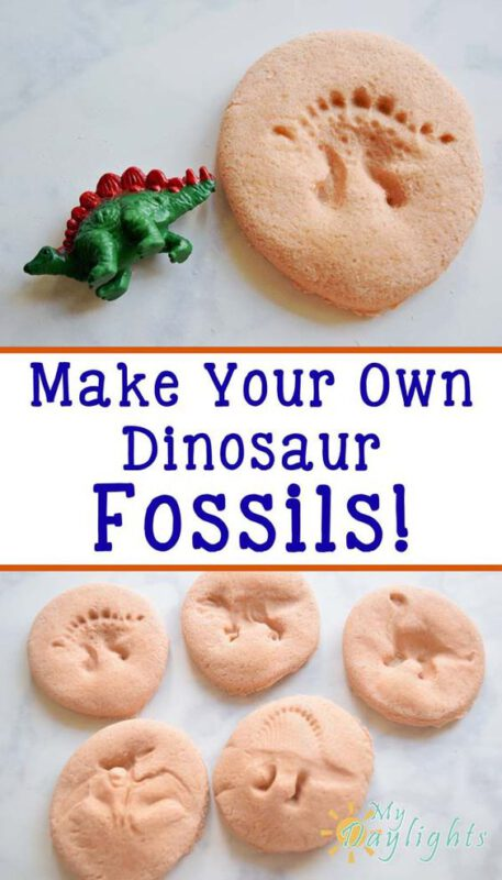 galleta fosilles de dinosaurios
